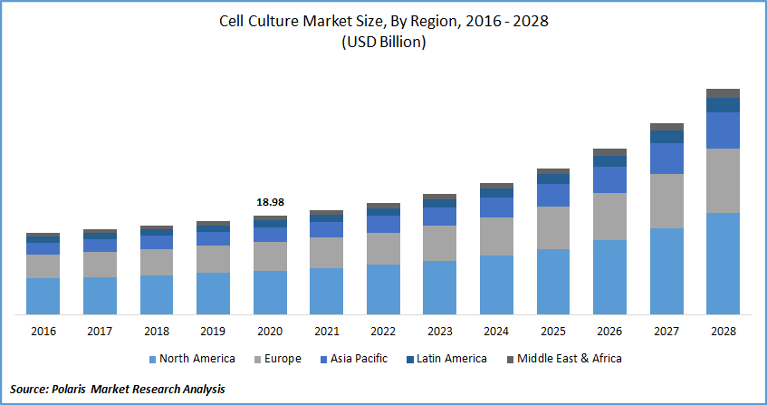 Cell Culture Market Report
