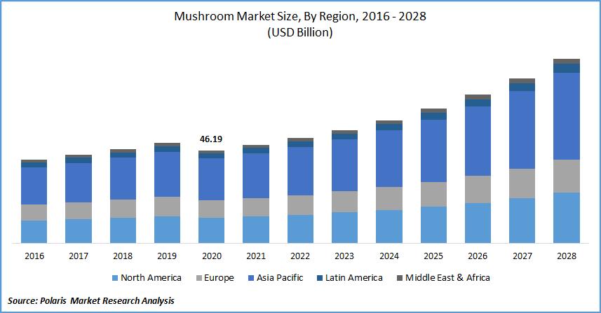 Mushroom Market Size