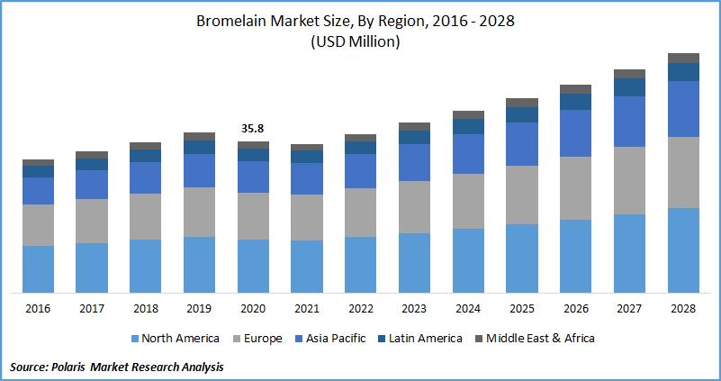 Bromelain Market Size